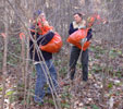 photo from RTP 2006 Plant Rescue
