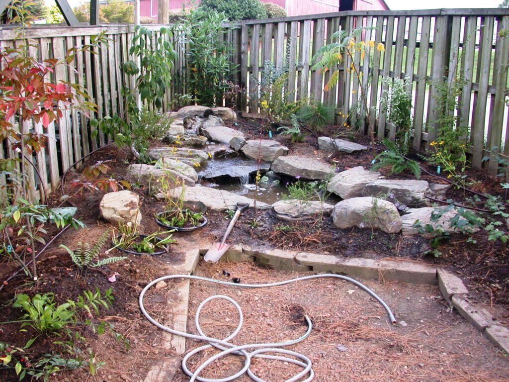 Our beautiful native garden!