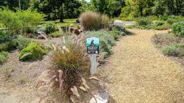 Forest Ridge Park