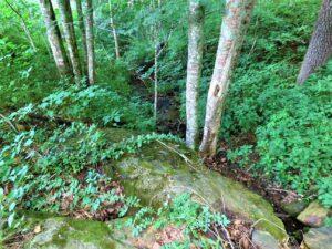 Kolb farm stream with rocks