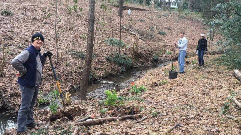 Volunteers planting native plants